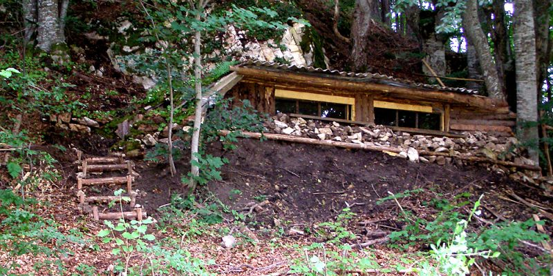 Brown bear observation hide