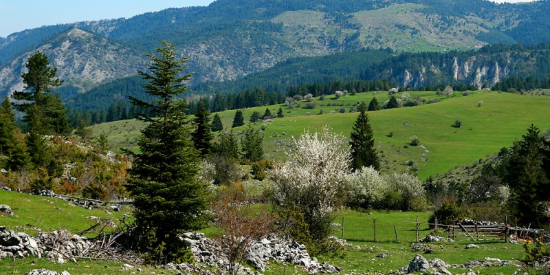 Tours in the rhodopes