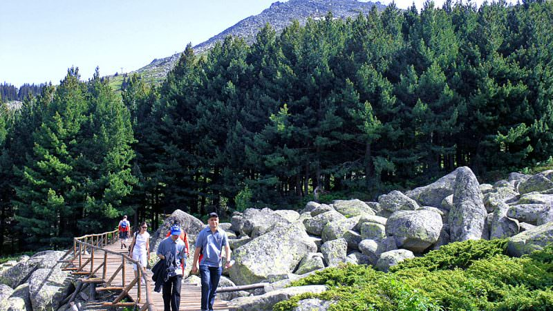 vitosha hiking tour